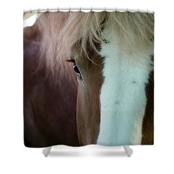 Shower Curtain featuring the photograph Beautiful Within Him Was The Spirit - 1 by Linda Shafer
