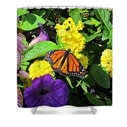 Shower Curtain featuring the photograph Beauty All Around by Cynthia Guinn