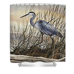 Beauty Along The Shore Shower Curtain