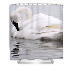 Beauty And Reflection Shower Curtain