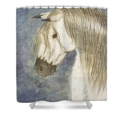 Beauty And Strength1 Shower Curtain by Debbie Portwood