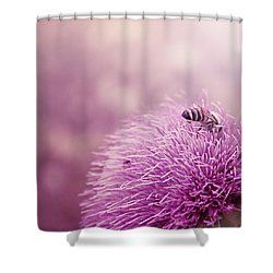 Beauty And The Bee Shower Curtain by Trish Mistric