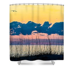 Beauty And The Birds Shower Curtain by Mary Ward