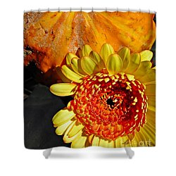 Beauty And The Squash 2 Shower Curtain by Sarah Loft