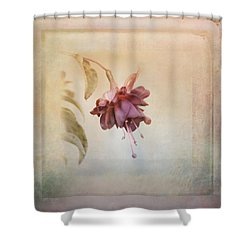 Beauty Fades Softly Framed Shower Curtain