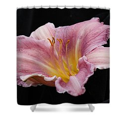 Beauty For Just A Day Shower Curtain