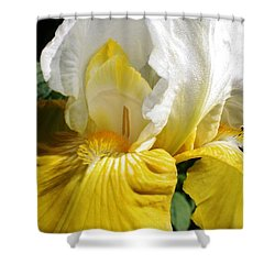 Beauty For The Eye Shower Curtain by Bruce Bley