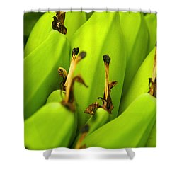 Beauty In Bannanas Shower Curtain by Justin Woodhouse