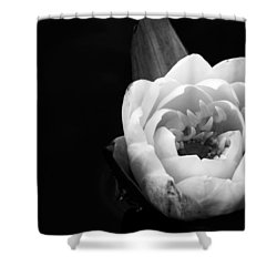 Beauty In The Dark Shower Curtain