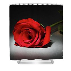 Beauty In The Spotlight Shower Curtain by Mariola Bitner