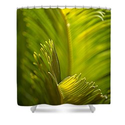 Beauty In The Sunlight Shower Curtain