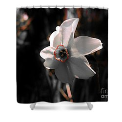 Shower Curtain featuring the photograph Beauty In The Woods by Sherman Perry