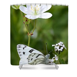 Beauty In White Shower Curtain