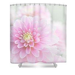 Beauty Iv Shower Curtain