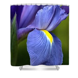 Shower Curtain featuring the photograph Beauty Of Iris by Joy Watson