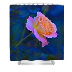 Flower 9 Shower Curtain