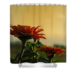 Beauty Of Nature Shower Curtain by Charles Beeler