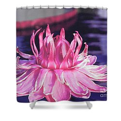 Shower Curtain featuring the photograph Beauty Of Pink At The Ny Botanical Gardens by Chrisann Ellis
