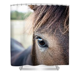 Beauty Shower Curtain by Swift Family