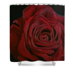 Shower Curtain featuring the painting Beauty by Thomasina Durkay