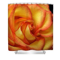 Shower Curtain featuring the photograph Beauty Unfolds by Judy Whitton