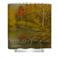 Beaver Dam Shower Curtain