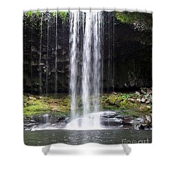 Shower Curtain featuring the photograph Beaver Falls by Chalet Roome-Rigdon