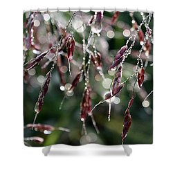 Bedazzled With Rain Droplets Shower Curtain