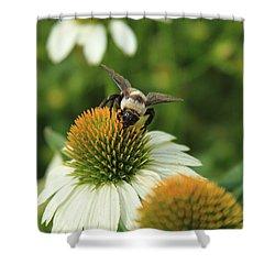 Bee 7 Shower Curtain by Reid Callaway
