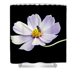 bee and Wildflower Shower Curtain