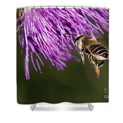 Bee Butt Shower Curtain