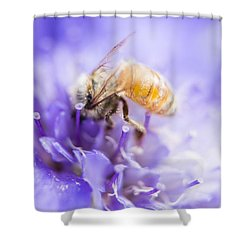 Bee Dream Shower Curtain by Caitlyn  Grasso