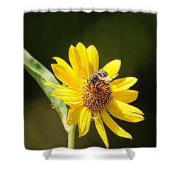 Bee Flower Shower Curtain