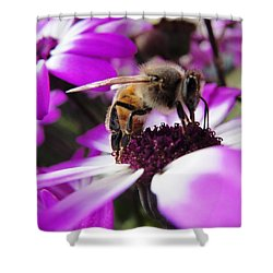 Bee Happy Shower Curtain by Norma Brock