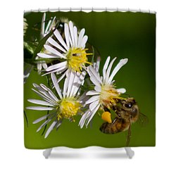 Bee Harvest Shower Curtain