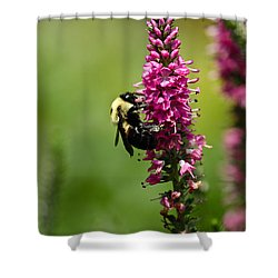 Bee Heaven Shower Curtain