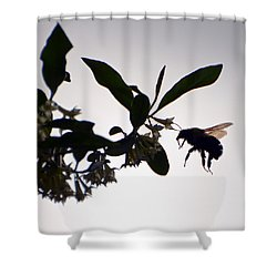 Shower Curtain featuring the photograph Bee In Flight  by Kerri Farley