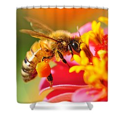 Bee Laden With Pollen Shower Curtain
