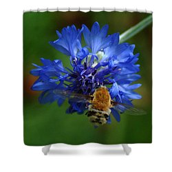 Shower Curtain featuring the photograph Bee by Leticia Latocki