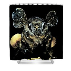 Bee Loaded With Pollen Shower Curtain by Darwin Dale