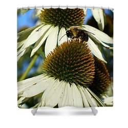 Shower Curtain featuring the photograph Bee On A Cone Flower by Lingfai Leung