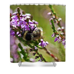 Bee On Heather Shower Curtain