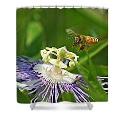 Bee On Passionflower Shower Curtain
