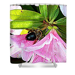 Bee On  Pink Azalea Shower Curtain