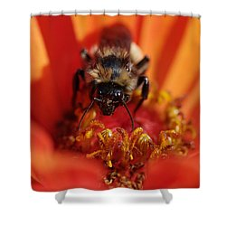Bee Taking Care Of Business Shower Curtain by Greg Graham