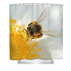 Bee-u-tiful Squared Shower Curtain by TK Goforth
