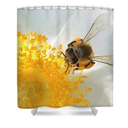Bee-u-tiful Shower Curtain by TK Goforth