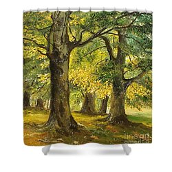 Beeches In The Park Shower Curtain