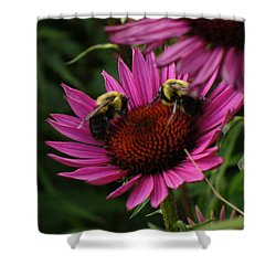 Shower Curtain featuring the photograph Beelievers by Lingfai Leung