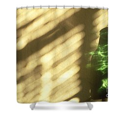 Beer Bottle Shower Curtain by Tony Cordoza